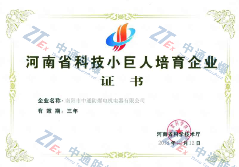 河南省科技小世人培育企业证书